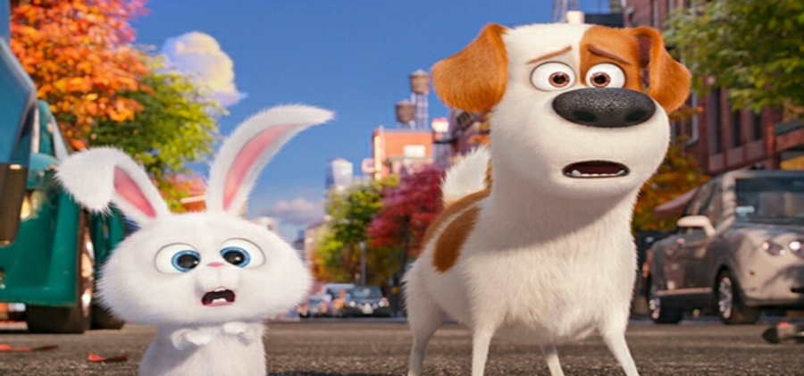 The Secret Life of Pets - Movie Review - Reads & Reels