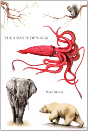 The Absence of Wings-Mark Stewart