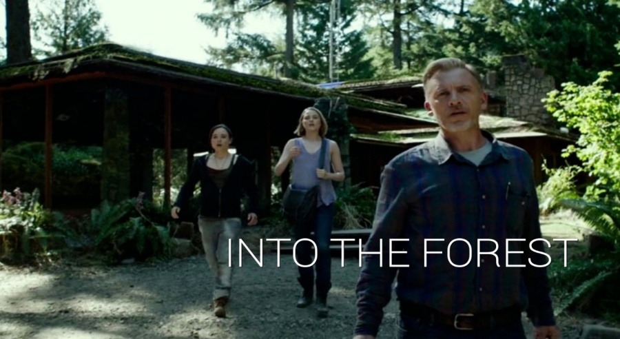 into the forrest movie review