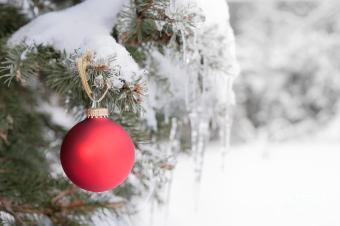 red-christmas-ornament-on-icy-tree-elena-elisseeva.jpg