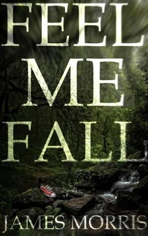 Feel Me Fall Cover 2D