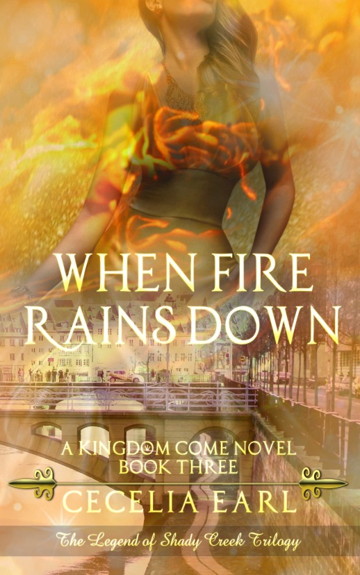 When Fire Rains Down Front Cover