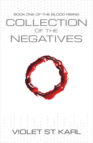 COLLECTION OF THE NEGATIVES eBOOk Cover.png